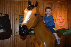 My first horse ride