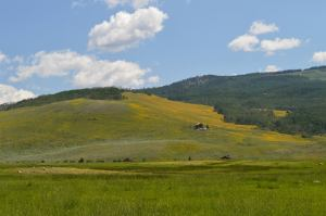 The Hills Just South of Crested Butte