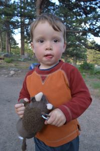 Van and Buddy the Bison