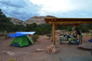 Our Campsite in Willow Flat Campground