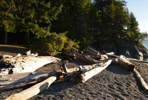 Porteau Cove Provincial Park, BC