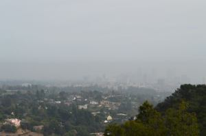 Smog, Thank You Very Much!