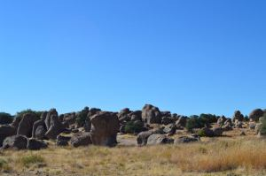 City of Rocks State Park, New Mexcio